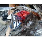 Nikki Catsouras Crash Scene  Bing Images