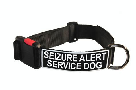 seizure service dogs collar with velcro patches seizure alert service ebay