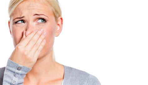 nare luchtjes in huis handige tips om van die nare luchtjes in huis af te komen