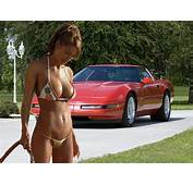 Sweet Car Babes  A Gallery On Flickr