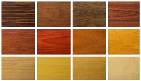 Cabinet Wood Types by Types Kitchen Cabinets
