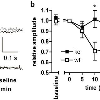(a) forskolin increases camp accumulation in acute
