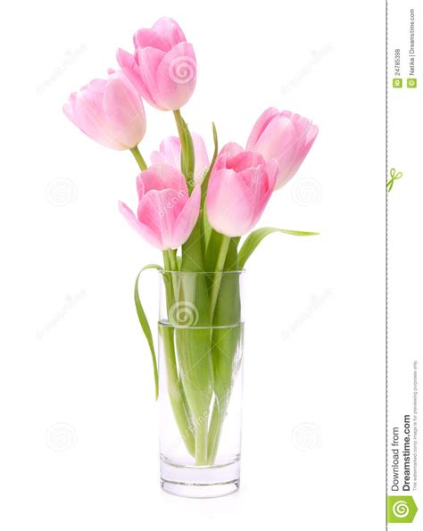 Pictures Of Tulips In Vases by Pink Tulips Bouquet In Vase Royalty Free Stock Photos