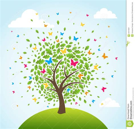 tree timer abstract time tree stock vector image of