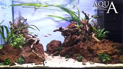 aquascape with rocks aquascaping lab tutorial aquarium volcanic rocks