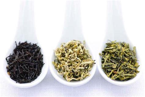 Teh Hijau Dan Teh Hitam perbedaan teh hijau teh hitam asal manfaat efek sing