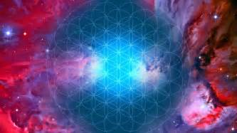 Become an embodied expression of higher consciousness in