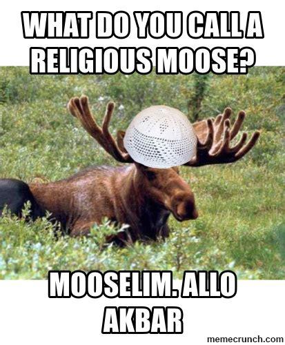 Moose Meme - what do you call a religious moose