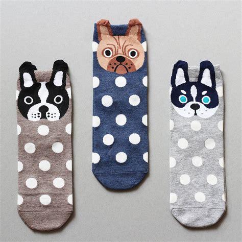 dogs in socks dotty socks in a box by studio hop notonthehighstreet