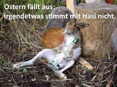 Witzige Osterhasen Bilder by Ostern F 228 Llt Aus Irgendetwas Stimmt Mit Hasi Nicht