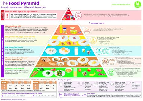 weight management articles 2016 cork independent new food pyramid is not a weight loss