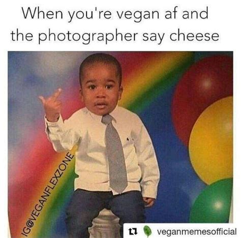 5 vegan memes vegan amino