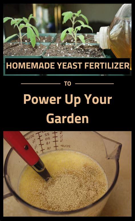 homemade yeast fertilizer  power   garden