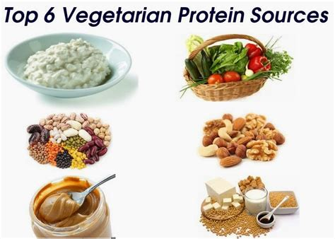 protein vegetarian top 6 protein sources for vegetarians