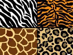 24 ways to go wild with animal print decor brit co 1000 images about wildlife and nature on pinterest wild