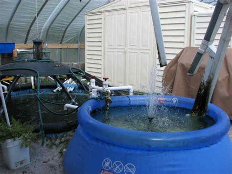 backyard catfish farming 101 best images about aquaponics on pinterest okra