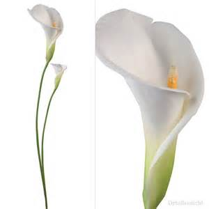 best 25 calla lily tattoos ideas on pinterest calla lillies calla lilies and lily lily