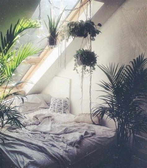 zimmerpflanze schlafzimmer 220 ber 1 000 ideen zu zimmerpflanze auf