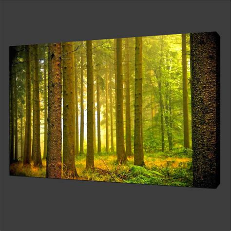 landscape canvas prints canvas prints home decor pictures modern wall landscape green tree forest ebay
