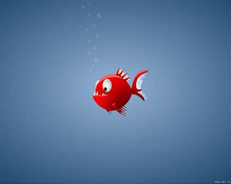 wallpaper 4k cartoon animated fish wallpaper hd desktop wallpapers 4k hd