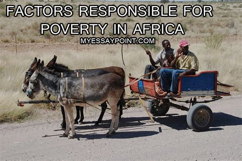 Poverty In Africa Essays Free by Poverty And Disease In Africa Essay Writefiction581 Web Fc2