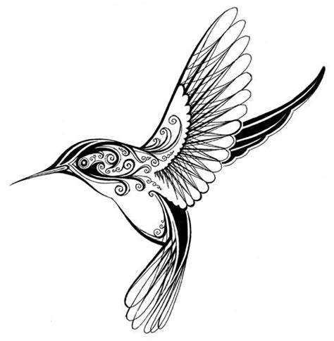 Hummingbird Outline by Hummingbird Drawing Ideas Hummingbirds Hummingbird