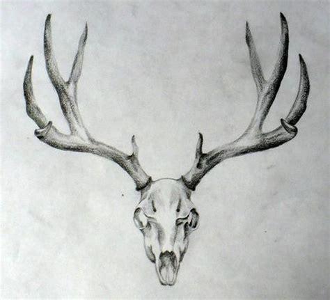 elk skull tattoo deer skull idea tattoos deer