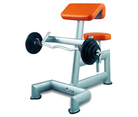 biceps bench fastfit fitness equipment fitness accessories