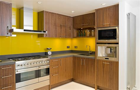 pictures of contemporary kitchen cabinets