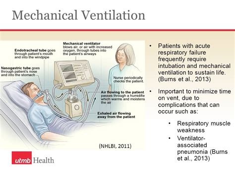 mechanical ventilation respiratory failure individual