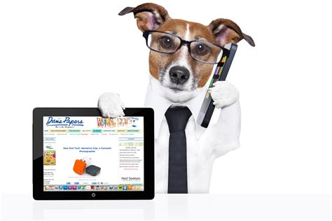 new technology for dogs k7technoz web design hosting training autocad siemens plc