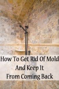 how to get rid mold in the bathroom 17 best images about bathroom on pinterest toilets