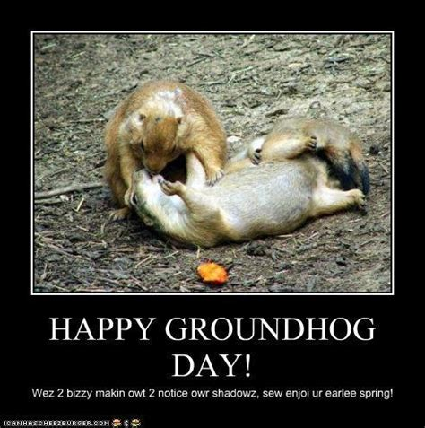 groundhog day jokes groundhog day