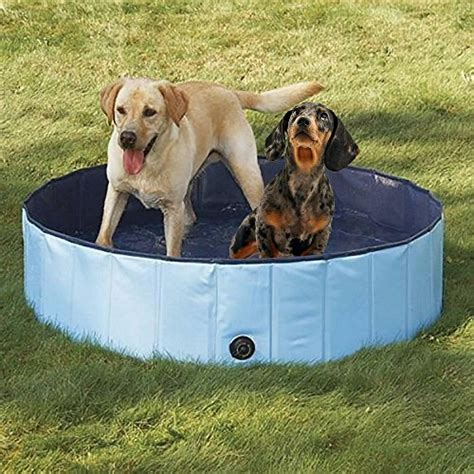 pet bathtub for dogs dog bathtub pyrus 63 x 11 8 inches collapsible pet bath