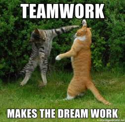 Teamwork Makes The Dreamwork Meme - teamwork makes the dream work measuring cats meme