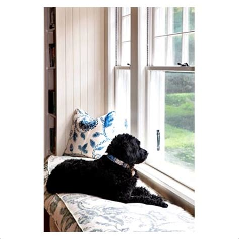 dog window bench gap interiors country landing with dog sitting on window