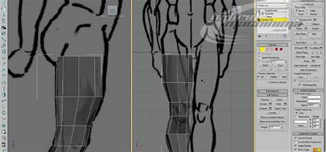 3d Blueprint Maker how to use edge loop character modeling in 3d studio max