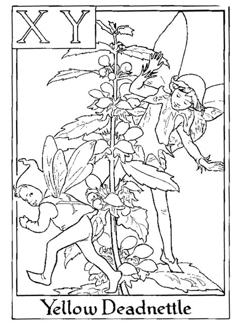 Colouring Pages Flower Fairies Fairy Coloring Pages Flower Fairies Coloring Pages