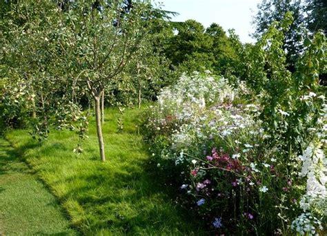 fiori alberi da frutto coltivazione alberi da frutto piante in giardino come
