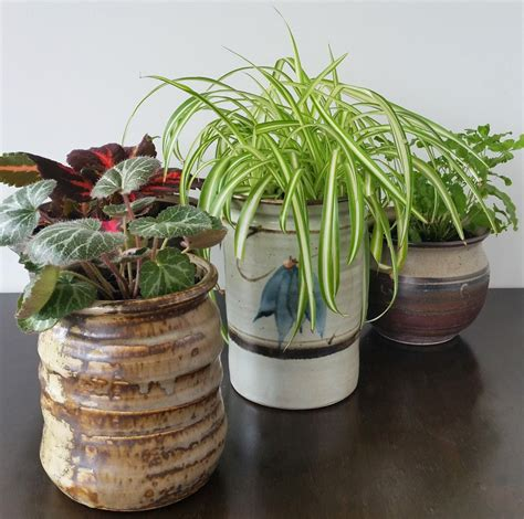 Plant Pots by Diy Project Upcycled Ceramic Jars To Plant Pots