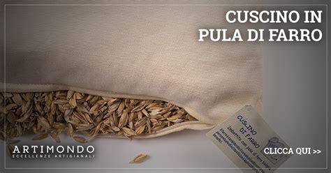i migliori cuscini per la cuscino per la quali sono i semi migliori