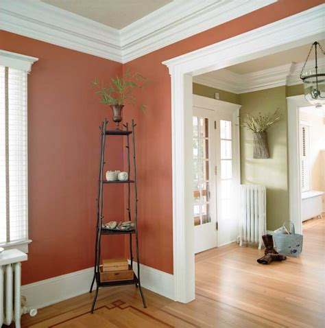 colored wall painting pointers boulder county home garden magazine