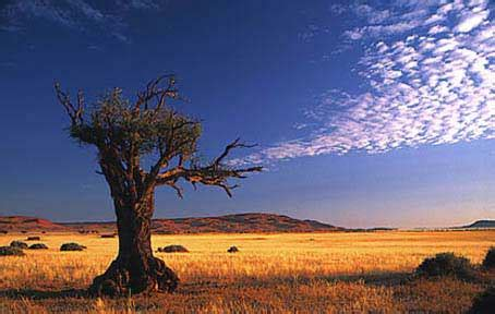 picture gallery  african scenery images  africas