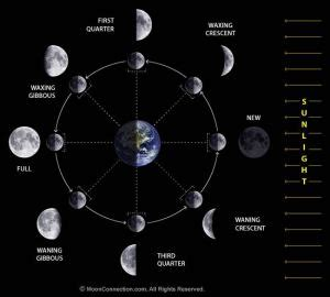 lunar phase diagram how to use the moon phases to your advantage astrology unboxed