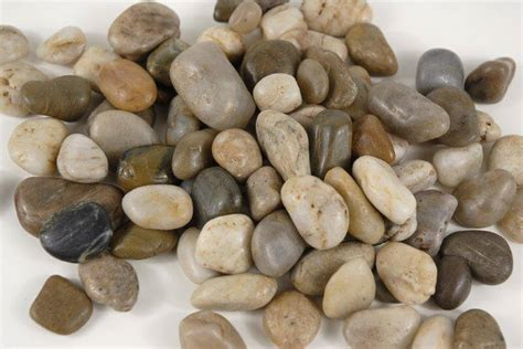 Rocks For Vases by Vase Filler Rocks 26oz