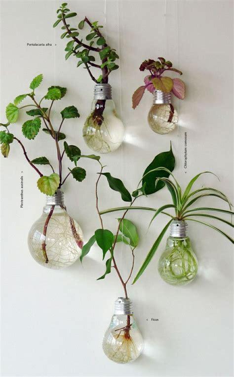 lightbulb wall planters ilevel