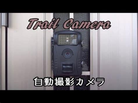 review wildkamera von fivanus (1080p, 8 monate laufzeit