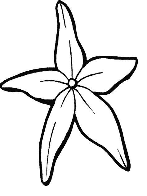 2012 01 29 Coloring Pages Starfish
