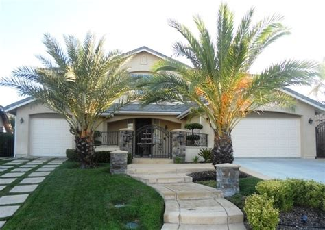 i want palm trees in my front yard house - Palm Trees In Front Yard