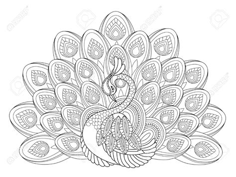 peacock coloring page adults peacock coloring pages for adults color bros
